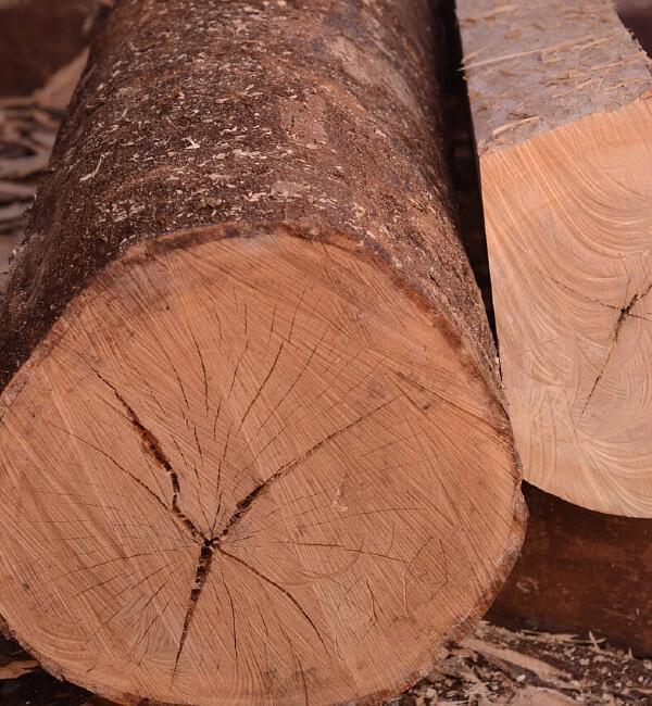 Madera para carpintería en Segovia